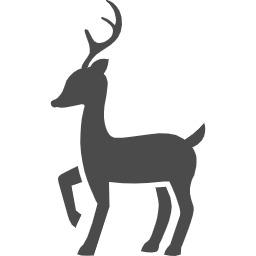 鹿と遭遇 有限会社大家住建